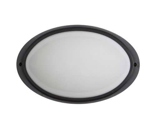 Настенно-потолочный светильник ELIPTIC Black